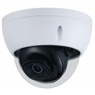 GOLIATH Starlight IP 4 MP Dome Kamera, Micro SD Slot, WDR, 30m IR, PoE, IP67, IK10