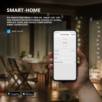 Goliath WLAN Smart Steckdose Wasserdicht IP 44, 2 AC-Ausgänge, Alexa, Google Home, App, Outdoor